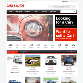 Auto dealer websites